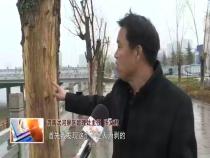 东秦百姓3月7日