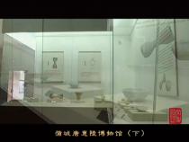 文化渭南9月14日