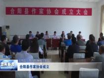 合阳县作家协会成立