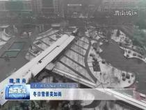 渭南新闻1月15日