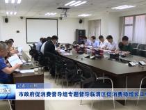 渭南市政府促消费督导组专题督导临渭区促消费稳增长工作