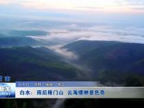 白水:雨后雁门山现云海奇观