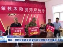 """渭南:用好财政资金 政策性农业保险为农户撑起""""保护伞"""""""