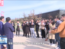 渭南新闻11月25日
