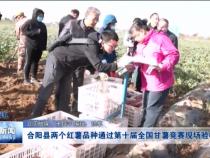 渭南新闻11月1日