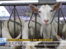 渭南新闻11月22日