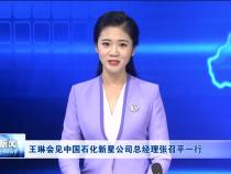 王琳会见中国石化新星公司总经理张召平一行