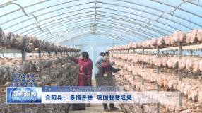 合阳县:多措并举 巩固脱贫成果