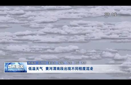 低温天气 黄河渭南段出现不同程度流凌